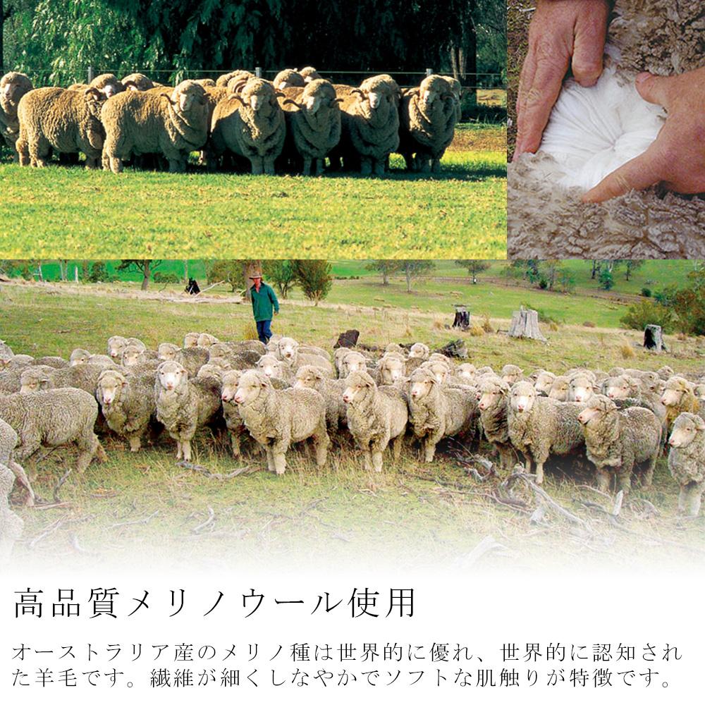 跪在日本棉配網規範除臭用鬆緊帶西河一線製成的羊毛跪著毛毯耐水洗墊單美利奴羊毛毯子絨毛為主 vance 日本和泉