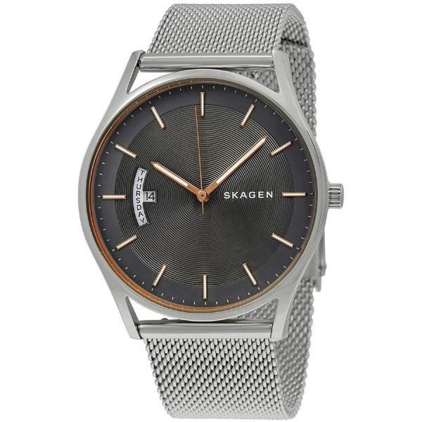 楽天 スカーゲン 腕時計 SKAGEN ホルスト 腕時計 時計 SKW6396 メンズ スライド式 シルバー グレー クオーツ アナログ表示 送料無料 プレゼント, タウンランドC 97591188