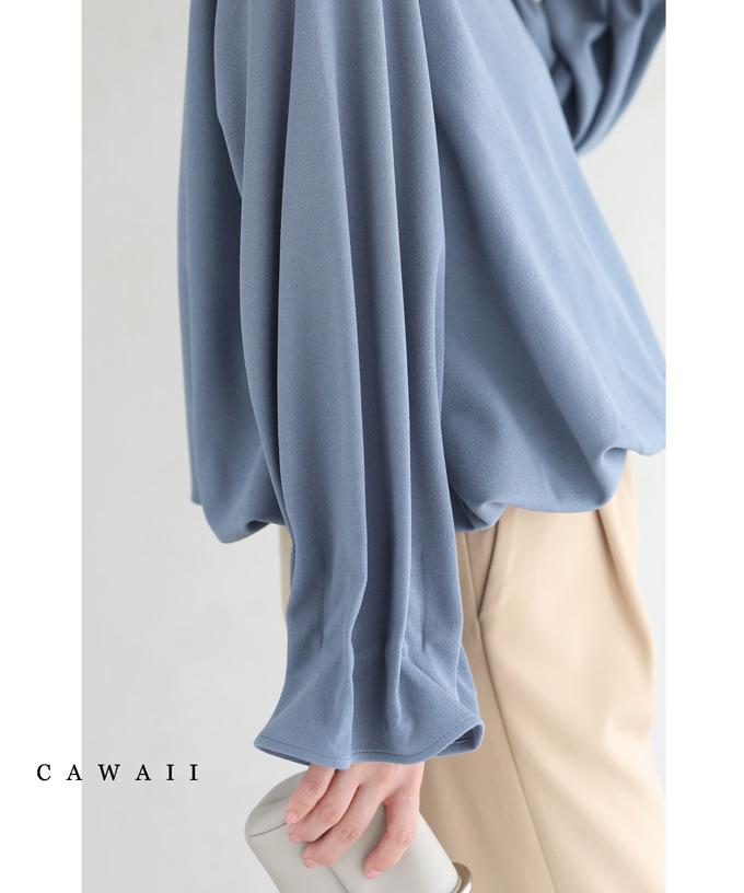 CAWAII 9月17日20時販売ピックアップ S~M L~2L対応 着後レビューで 送料無料 ご注文で当日配送 流線タック袖のポワン裾プルオーバートップス