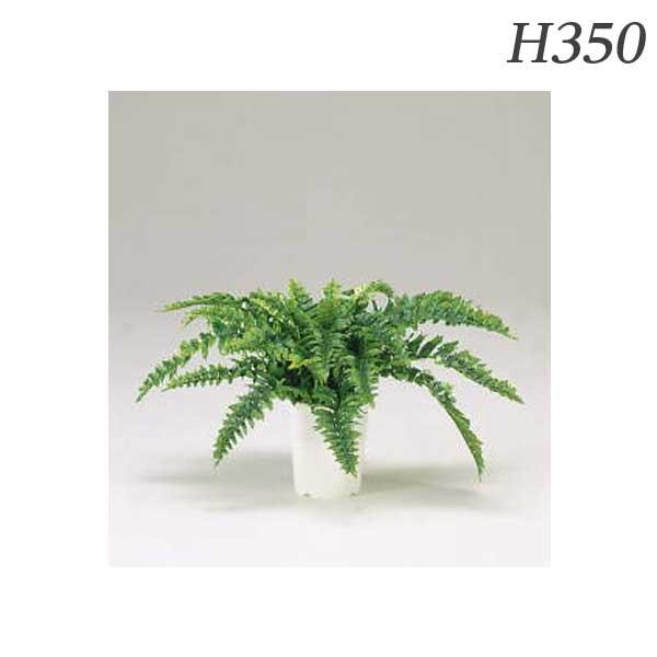 ライオン事務器 人工植物 ダブルラッフルファーン 約H350mm GS-111 576-82【代引不可】【送料無料(一部地域除く)】