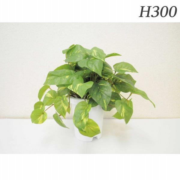 ライオン事務器 人工植物 テーブルポトス 約H300mm GS-115 576-86【代引不可】【送料無料(一部地域除く)】