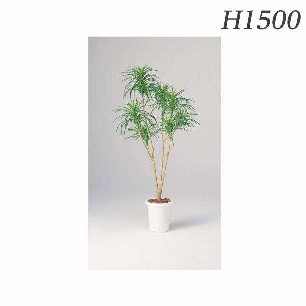 ライオン事務器 人工植物 ユッカ(グリーン) 約H1500mm AS-YG15 576-10【代引不可】【送料無料(一部地域除く)】