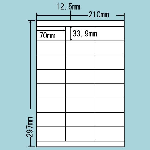 ラベルシール 東洋印刷 LDZ24UX カラーインクジェット用A4 500シート【代引不可】【送料無料(一部地域除く)】