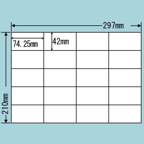 ラベルシール 東洋印刷 C20SF 再剥離タイプ A4 100シート×5箱【代引不可】【送料無料(一部地域除く)】