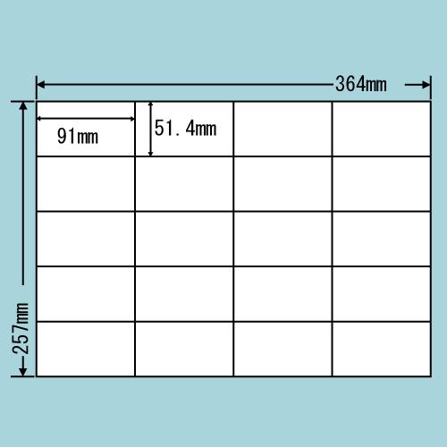 ラベルシール 東洋印刷 E20SF 再剥離タイプ B4 100シート×5箱【代引不可】【送料無料(一部地域除く)】