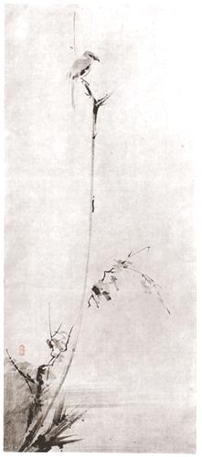 徳川時代 宮本二天(武蔵)筆 古木鳴鵙圖