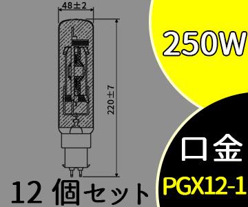 【パナソニック】(12個セット)MT250FE-WW-PG/N[MT250FEWWPGN]スカイビーム 片口金 PG形 拡散形【返品種別B】