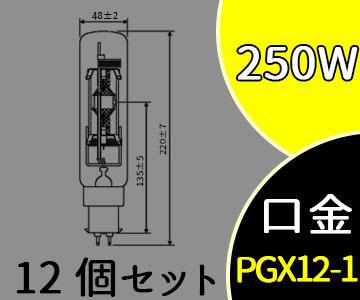 【パナソニック】(12個セット)MT250E-W-PG/N[MT250EWPGN]スカイビーム 片口金 PG形【返品種別B】