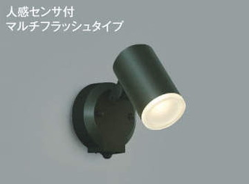 AU38269L【コイズミ照明】エクステリアスポットライト LED(電球色)【返品種別B】