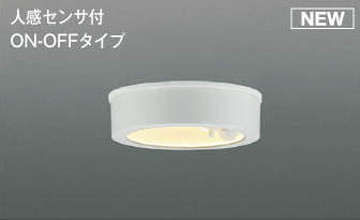AU50488【コイズミ照明】防雨型LEDシーリングライト LED(電球色)【返品種別B】