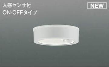 【法人限定】AU50489【コイズミ照明】防雨型LEDシーリングライト LED(昼白色)【返品種別B】