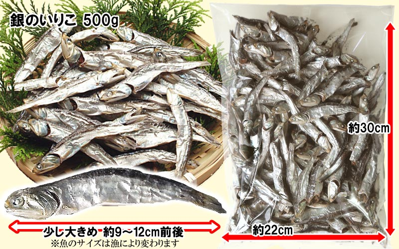 Gift Giveaway early % Ibuki Island dried niboshi Kagawa Prefecture and dries and additive-free silver sardines (dashi Jaco) 500 g Kagawa Prefecture from Ibuki island produced correspondence / birthday Stork 内 祝 I celebrate 快気祝い sale
