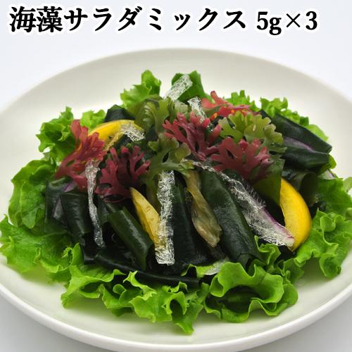 限定20%OFFクーポン 色鮮やかな海の野菜を手軽に 海藻サラダ 高品質 15g 便利な個包装タイプの海藻サラダ 株式会社山忠 売り込み 5g×3袋