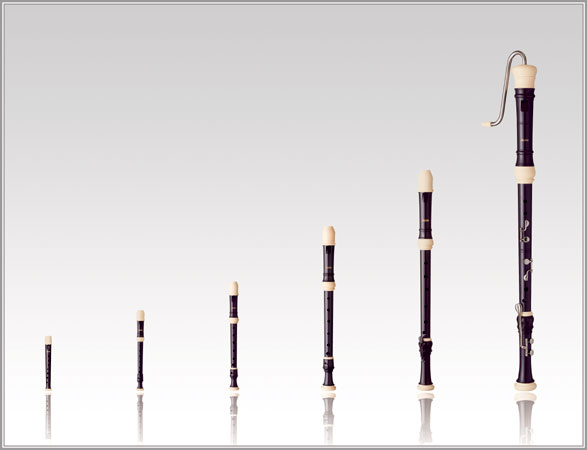 Aulos-Symphony series soprano recorder soft case with 502B(G) 503B(E)