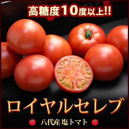鹽番茄皇家扔 (900 g) 從熊本自治州 yasshiro 和大和番茄糖度 10 度以上