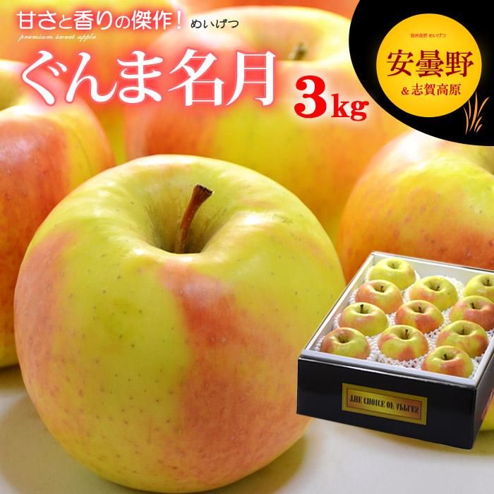 送料無料 名月りんごは あかぎ × ふじ の交配でサンふじを超えたと言われる甘い高糖度リンゴ めいげつ 名月 ぐんま名月りんご お求めやすく価格改定 林檎 リンゴ 食品 りんご フルーツ 3kg 果物 商店 長野産