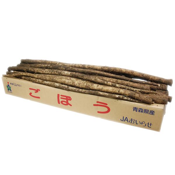 箱売り ごぼう ゴボウ ゴボー 1箱 約10kg 国産 業務用 鹿児島 売り出し 茨城 20~30本 サービス 大量販売