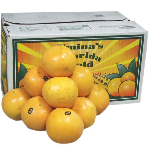 【箱売り】グレープフルーツ ルビー 36玉~48玉 [フロリダ·南アフリカ·オーストラリア] 【業務用·大量販売】【RCP】
