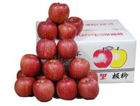 【箱売り】 ふじりんご 36玉約10kg 【業務用・大量販売】【RCP】