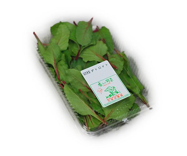 代表的なリーフレタスのひとつ 開店祝い 葉先は濃い紅色で葉質はやわらか サラダや巻き物に 九州産 デトロイト 九州 1パック 35%OFF サラダや料理のいろどりに 福岡産