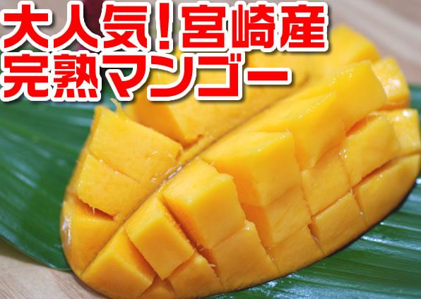 【宮崎マンゴー】国産完熟マンゴーの最高峰『太陽のタマゴ』!約800gの大玉1玉