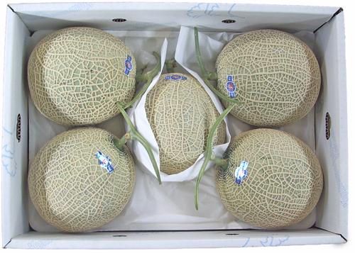 アールスメロン(メロン) 1箱 (5~6玉)九州・熊本・長崎・宮崎