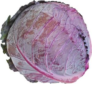 生のままピクルスやサラダなどで! レッドキャベツ(紫キャベツ・赤キャベツ・きゃべつ) 1玉 【鹿児島・熊本・佐賀・長野・岡山産】 サラダに入れると彩よく綺麗ですね。