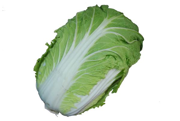 白菜(はくさい・ハクサイ) 1本  芯の部分は細切りにしてサラダで! 【九州・大分・熊本・福岡産】
