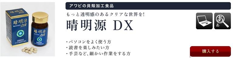 晴明源DX(アワビの貝殻)