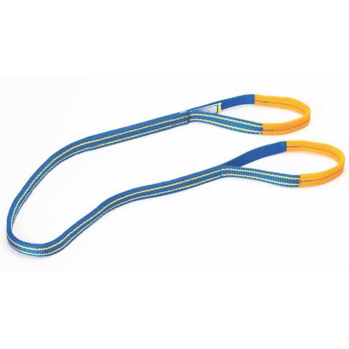 受注生産品 吊りクランプ スリング 荷締機 ベルトスリング スーパーSALE対象商品 シライ シグナルスリングHG 両端アイ形 SG4E253 東レインターナショナル 幅25mm 産資製品課 期間限定で特別価格 SG4E25-3 株 長さ3.0m
