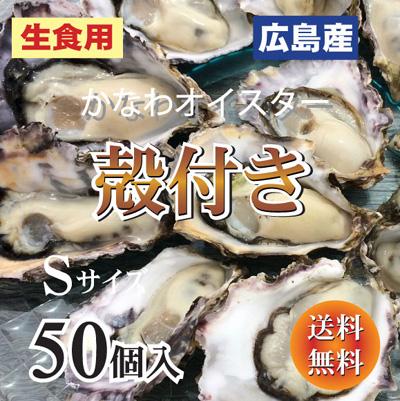 殻付き牡蠣 開け方
