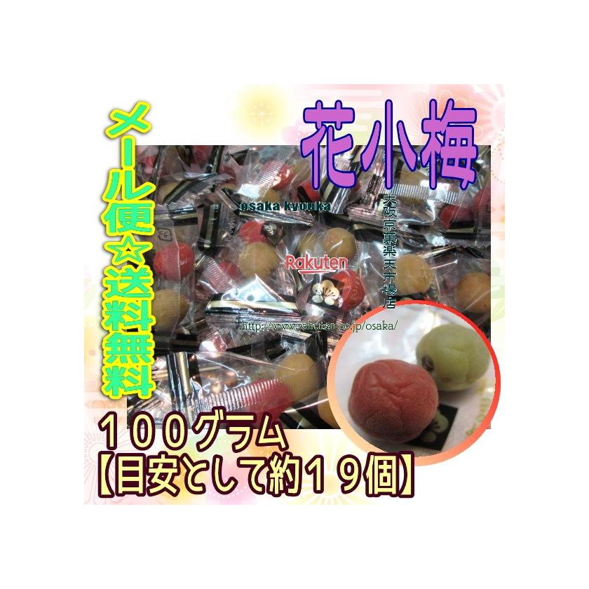 【メール便送料無料】大阪京菓ZRヨネヤマ 100グラム【目安として約19個】  花こうめ ×1袋 +税 【ma】
