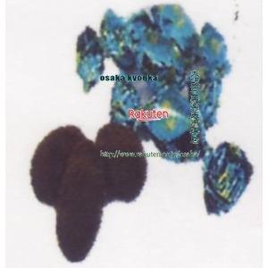 大阪京菓 ZRxピュアレ 2000グラム ティラミスチョコ【チョコ】×1袋 +税 【x2fu】【送料無料(北海道・沖縄は別途送料)】
