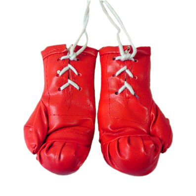 United Kingdom imports! Manchester United car accessories! Mini boxing gloves! Set left and right! Even the car! In your room! As a garnish also! To the person I love football!