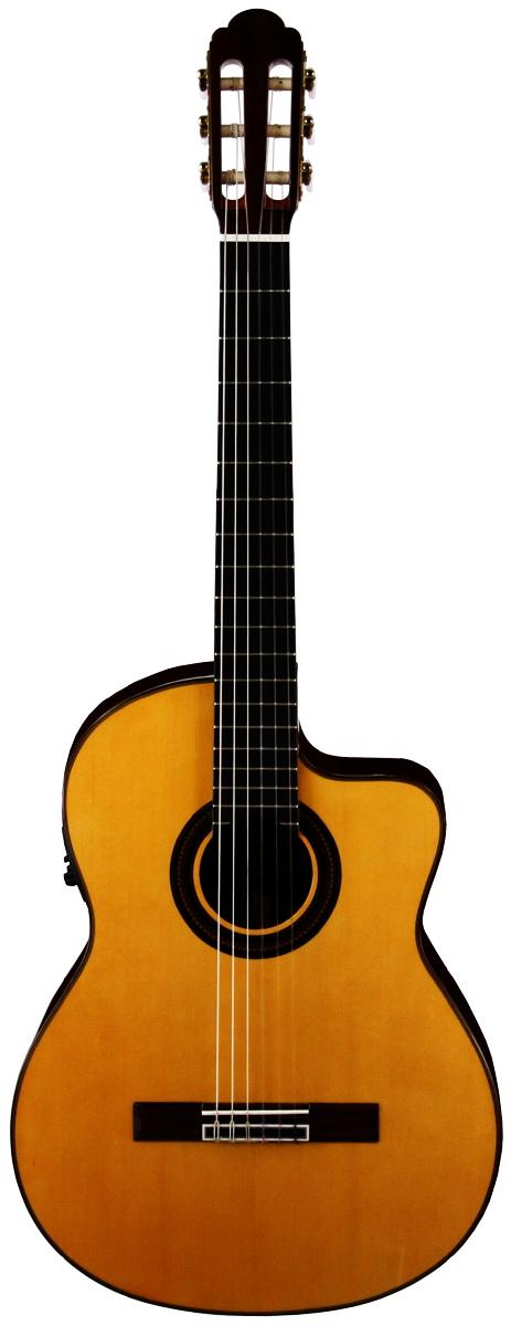 ARIA アリア A-60CWE エレクトリック・ガットギター【送料無料】【smtb-ms】【zn】