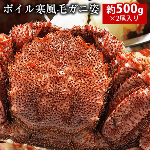 【送料無料】ボイル寒風毛ガニ姿約500g×2尾