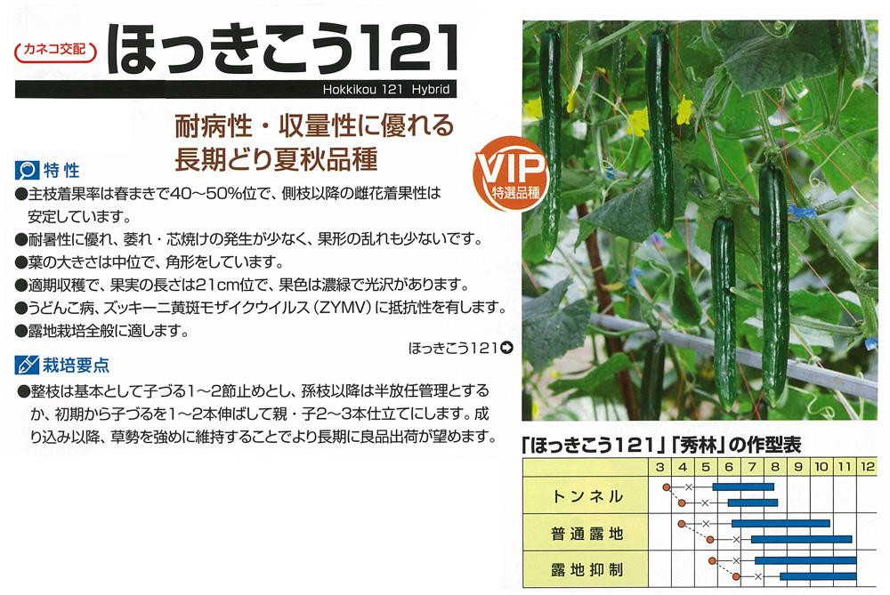 【キュウリ】ほっきこう121〔カネコ交配〕/350粒