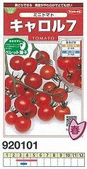 贈り物 ミニトマト キャロル7〔サカタ交配〕 特価キャンペーン 200粒ペレット種子