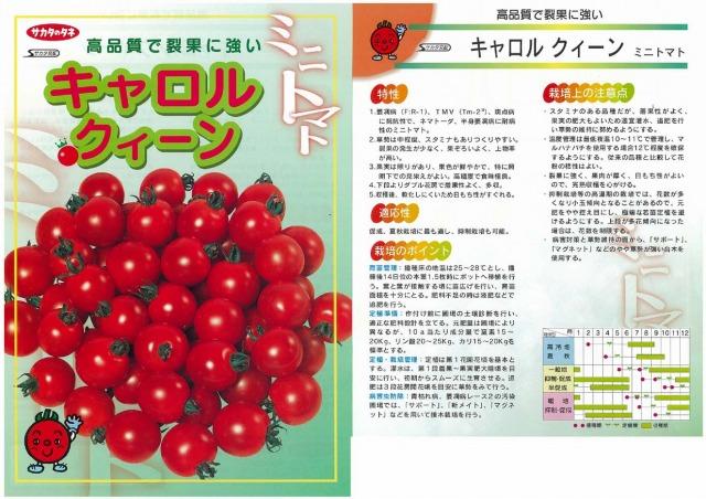 【ミニトマト】キャロルクィーン〔サカタ交配〕/1000粒