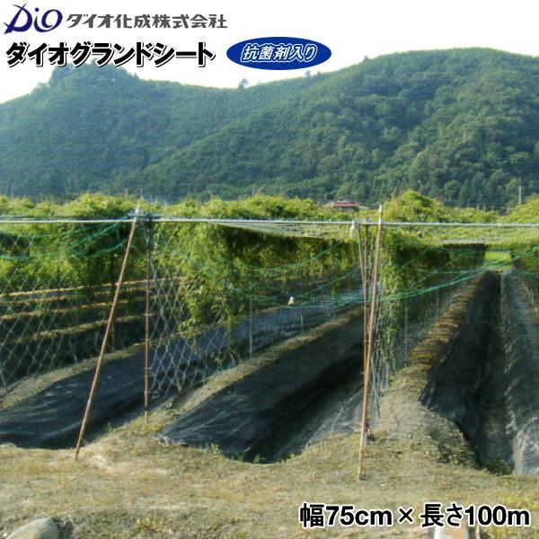ダイオ化成 防草シート グランドシート 幅75cm×長さ100m 黒 (抗菌剤入り)