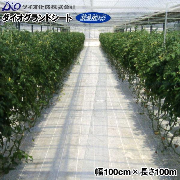 ダイオ化成 防草シート グランドシート 幅100cm×長さ100m シルバー (抗菌剤入り)