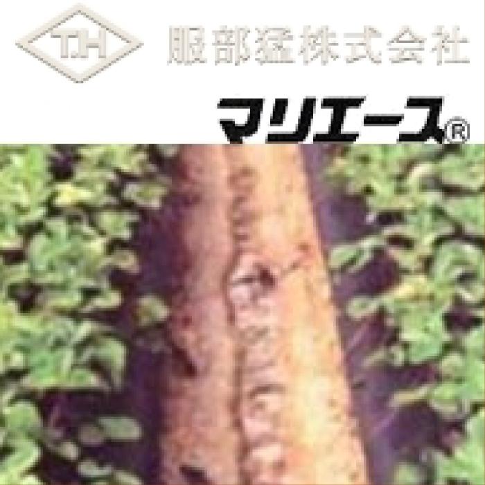 農業用不織布 マリエース E01025 (白) 幅210cm×長さ100m