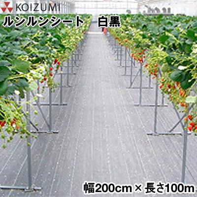 KOIZUMI (小泉製麻) 防草シート ルンルンシート 白黒 幅200cm×長さ100m