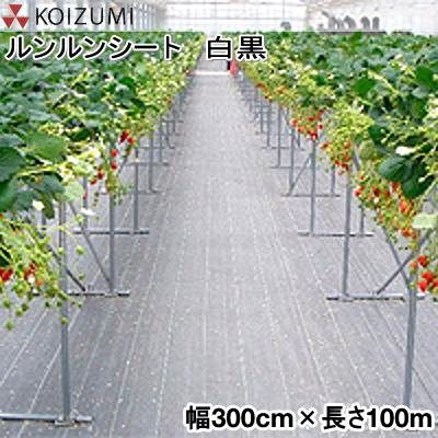 KOIZUMI (小泉製麻) 防草シート ルンルンシート 白黒 幅300cm×長さ100m (反物)