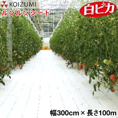 KOIZUMI (小泉製麻) 防草シート ルンルンシート 白ピカ 幅300cm×長さ100m (反物)
