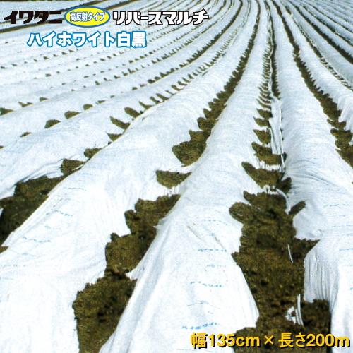 イワタニリバースマルチ(白黒マルチ) ハイホワイト 厚み0.025mm 幅135cm×長さ200m 2本セット