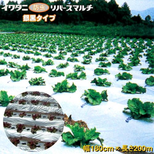 イワタニリバースマルチ(銀黒マルチ) 厚み0.023mm 幅180cm×長さ200m 3本セット