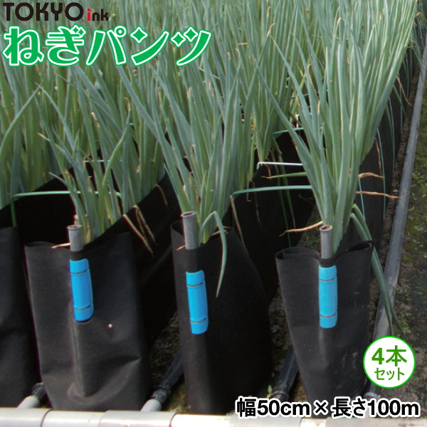 軟白ねぎ栽培用遮光シート ねぎパンツ 幅50cm×長さ100m お得な4本セット