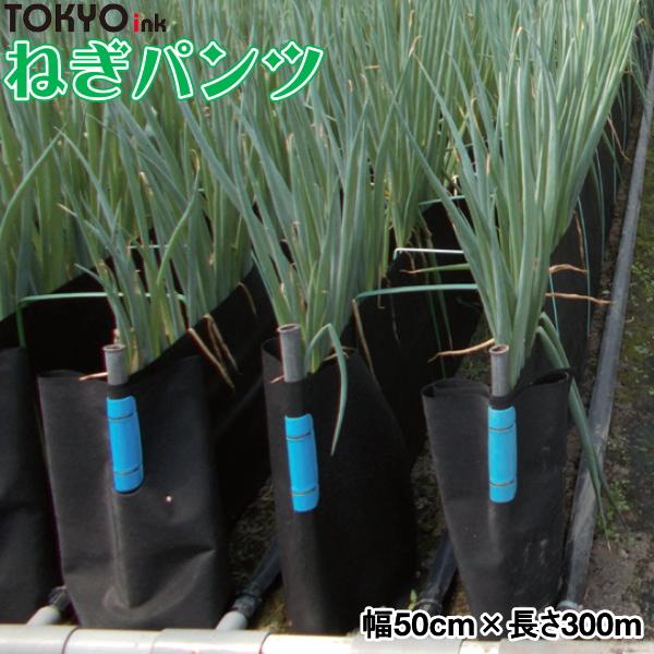 軟白ねぎ栽培用遮光シート ねぎパンツ 幅50cm×長さ300m