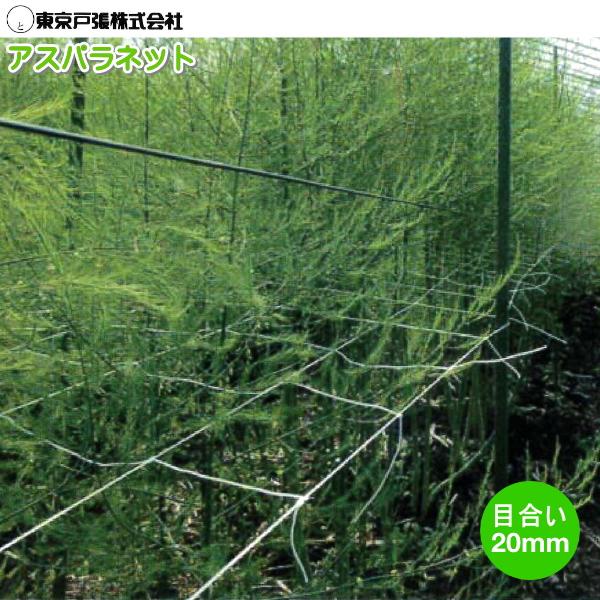 東京戸張 アスパラネット 網目20cm 角目 4目×長さ100m 白色